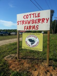 Locations - Cottle Strawberry Farm