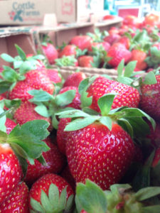 About Us - Cottle Strawberry Farm